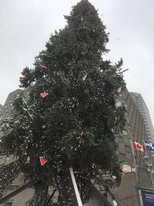 Montreal Lights Up An Ugly Christmas Tree For The Holidays (5 pics)