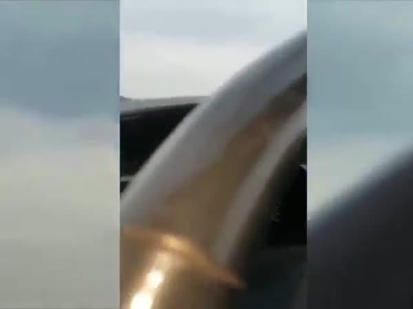 Angry Hippo Attacks And Hits Car