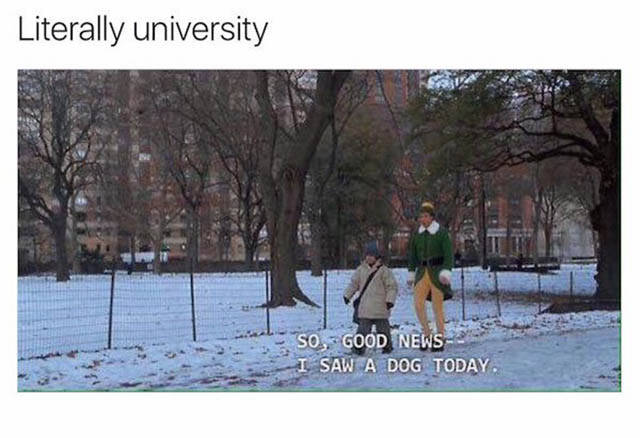The Truth About What College Life Is Like During Finals (30 pics)
