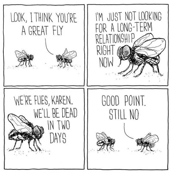Hilarious Comics That Also Happen To Be Sad (50 pics)