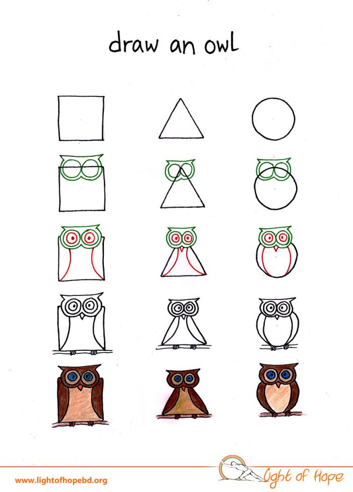 How To Use A Triangle, Square Or Circle To Draw Any Animal (10 pics)