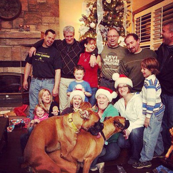 A Whole Bunch Of Nopes That You Need To Avoid On Christmas (39 pics)
