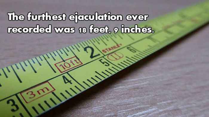 Prepare To Be Blown Away By These NSFW Facts (18 pics)