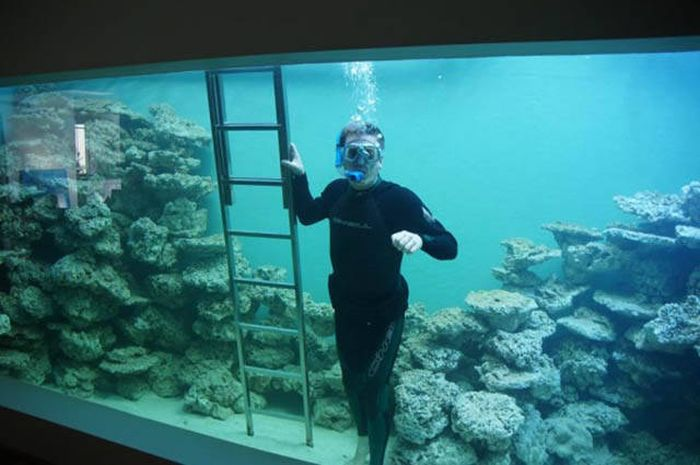 Man Builds An Aquarium Where He Can Scuba Dive With Fish (12 pics)