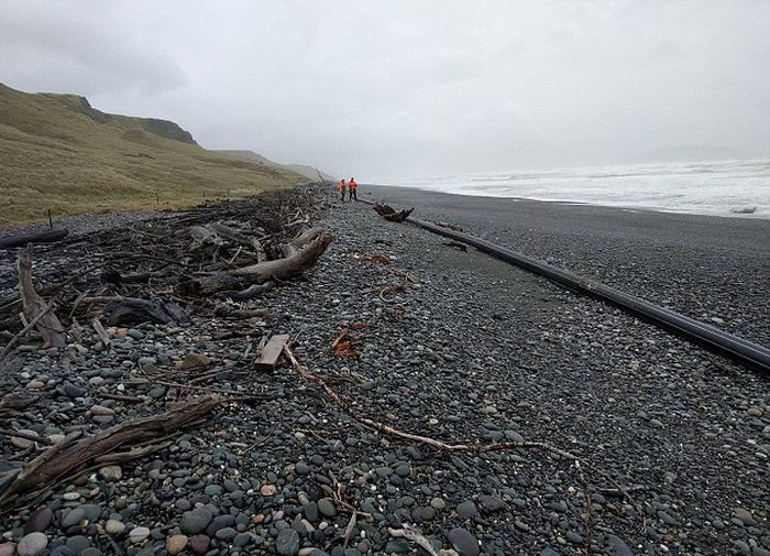 Long Object Baffles New Zealand Beachgoers (4 pics)