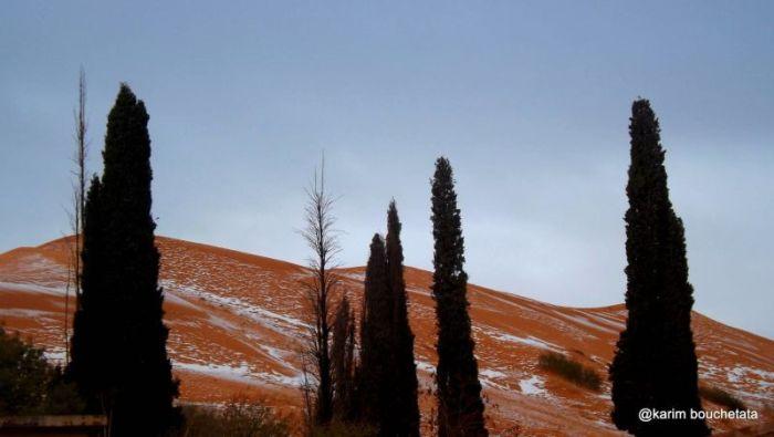 Unbelievable Photos Show Freak Snowfall In The Sahara Desert (9 pics)