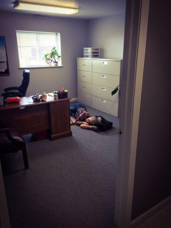Work Fails & Job LOLs. Part 73 (36 pics)