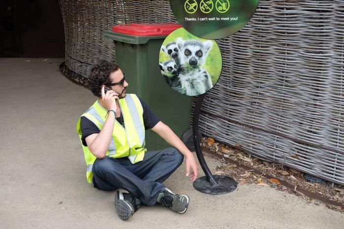 Guy Discovers He Can Go Anywhere While Wearing A Hi-Vis Vest (8 pics)
