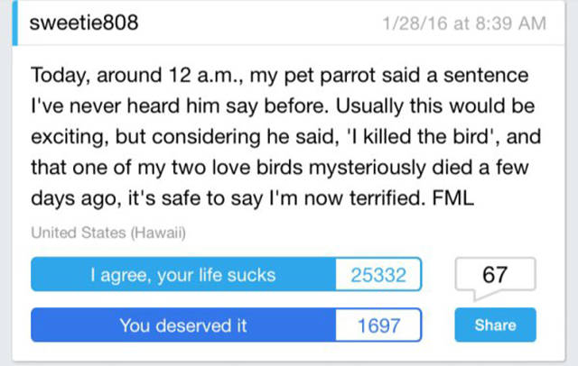 FML Stories That Will Show You How Awkward Life Can Get (29 pics)