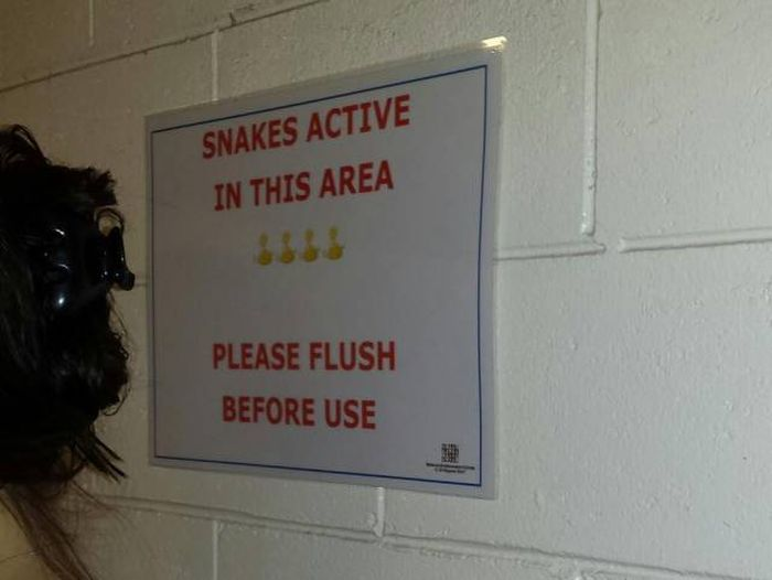 This Is A Good Reason Not To Visit Australia (4 pics)