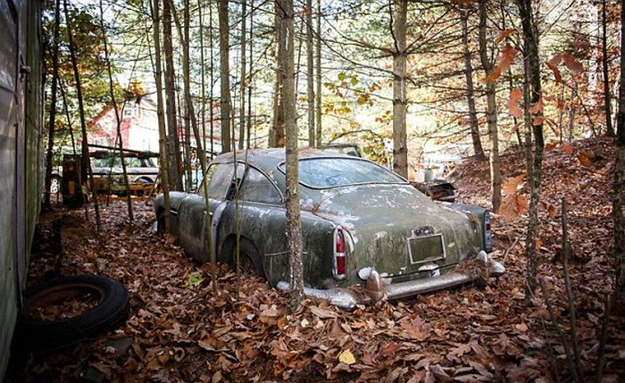 Abandoned Aston Martin Set To Sell For A Small Fortune (8 pics)
