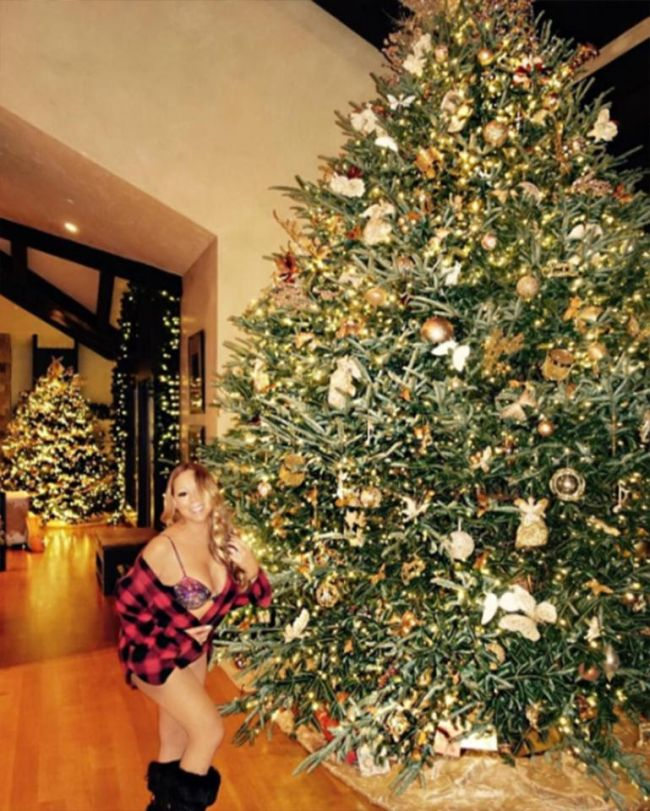 Mariah Carey Shows Off Her Sexy Outfit For Christmas (2 pics)