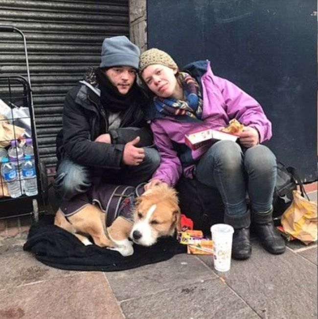 Guy Builds A Shelter For A Homeless Couple On Christmas Eve (3 pics)
