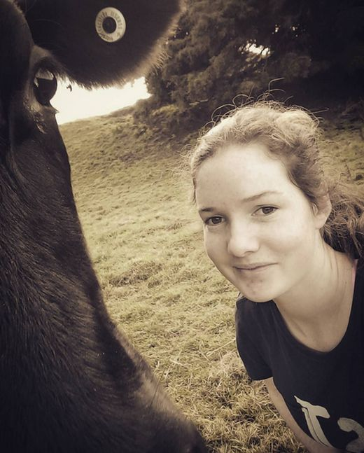 Girl Gets A Cow For Her Birthday After Asking For A Pony (7 pics)