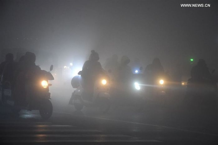 China Issues Red Alert For Fog For The First Time (9 pics)