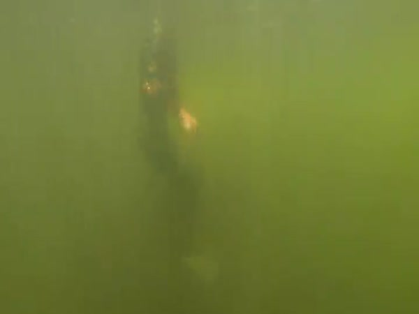 Guy Uses GoPro To Document Underwater River Finds