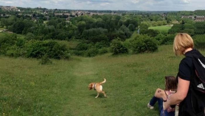 Brutal Panoramic Pictures Fails (18 pics)