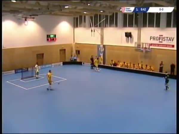 Roof Falling During Floorball Game