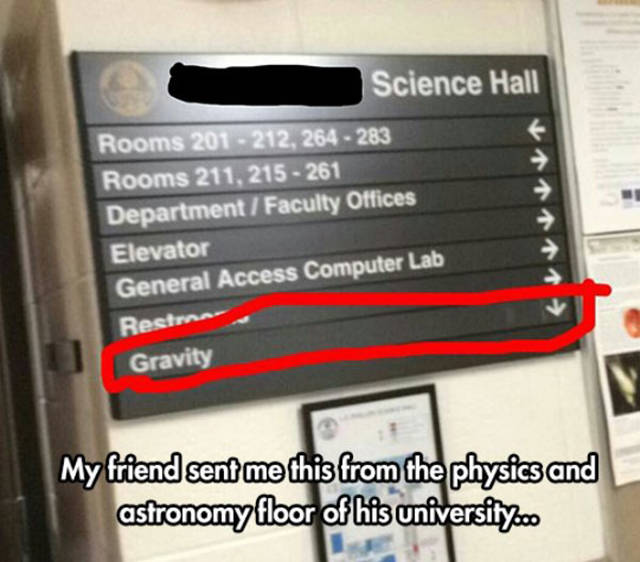 Random Moments Of Undeniable Genius (43 pics)