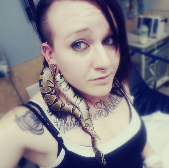 Snake Gets Stuck In Woman's Ear Hole (2 pics)