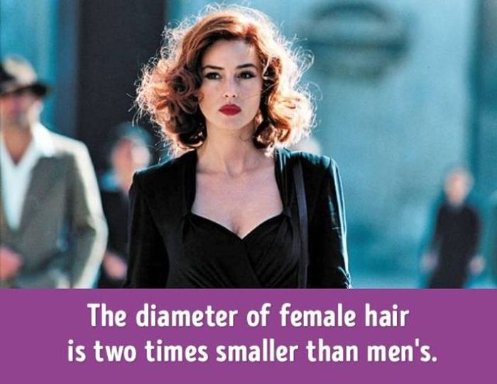 Fantastic Facts About Female Bodies That Will Make You Appreciate Women (14 pics)