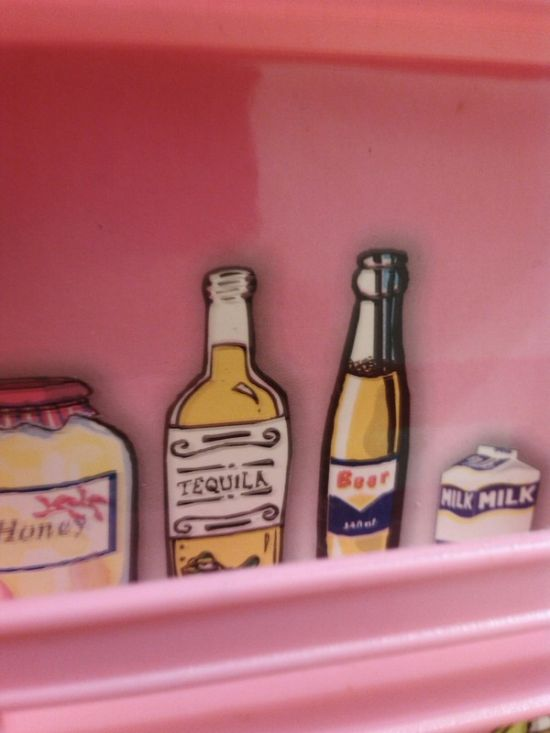 Interesting Surprise Discovered In A Toy Refrigerator (3 pics)