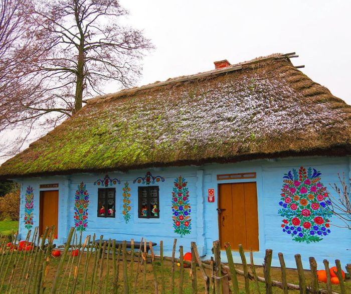 This Little Polish Village Is Covered In Colorful Flower Paintings (31 pics)