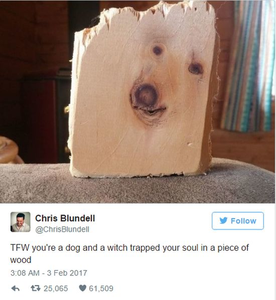 The Funniest Tweets You're Going To See This Week (19 pics)