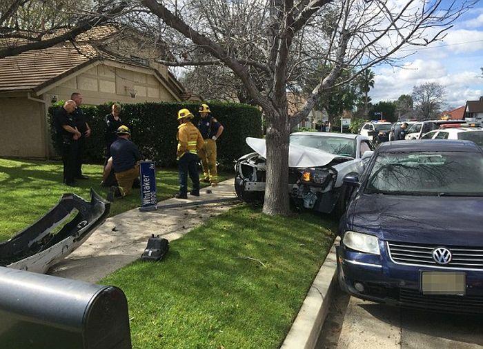Nicolas Cage's Son Weston Gets Arrested After Crashing Into A Tree (5 pics)