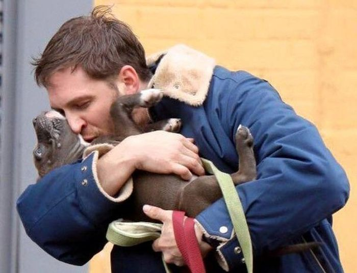 Tom Hardy Really Seems To Love Dogs (11 pics)