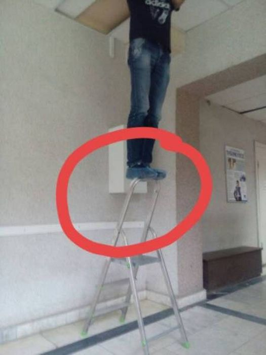 Natural Selection Is What The World Really Needs Right Now (30 pics)