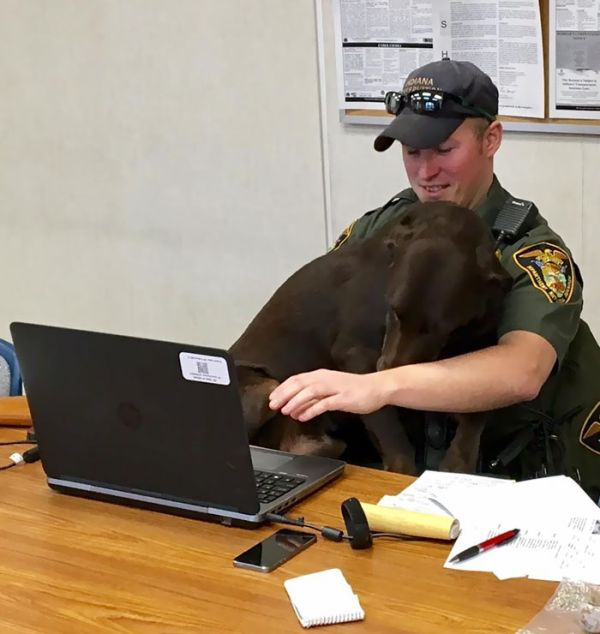 K9 Cop Won't Stop Kissing His Partner (5 pics)