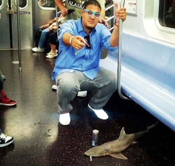 Subway Trains Are Like An Underground Incubator For Freaks (37 pics)