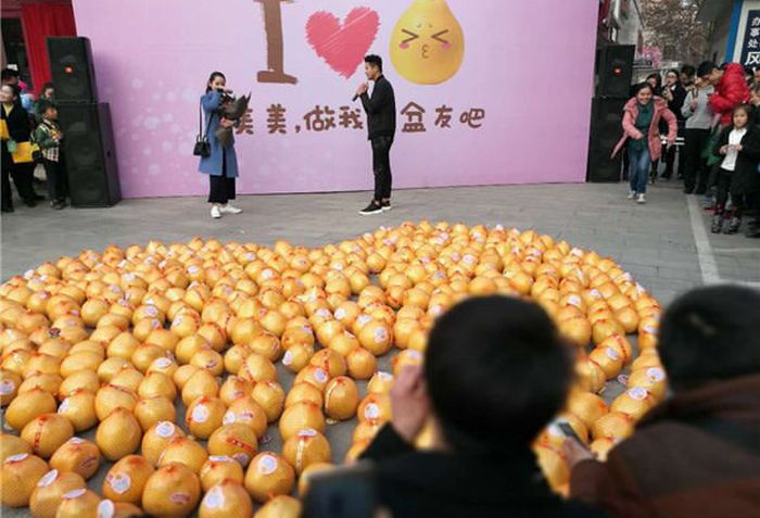 Guy Gets Rejected After Declaring His Love With 999 Pomelos (10 pics)