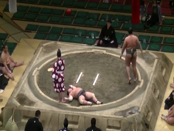 Sumo Wrestler Catches An Elbow Straight To The Chin