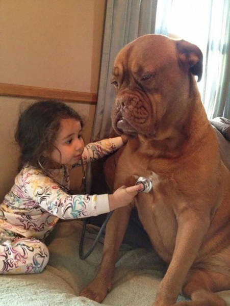 Amusing Examples Of Pictures That Say A Thousand Words And A Whole Lot More (39 pics)