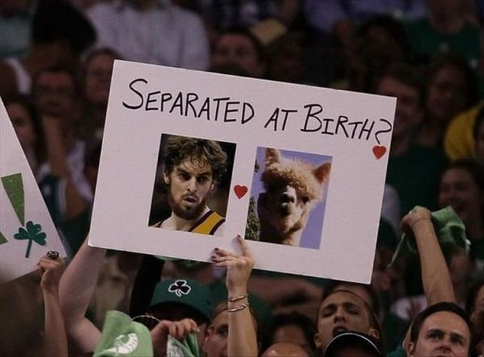Hilarious Sports Signs Spotted At Games (19 pics)
