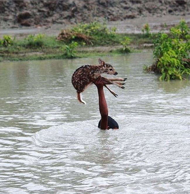 A Friendly Reminder That Life Is Absolutely Beautiful (17 pics)