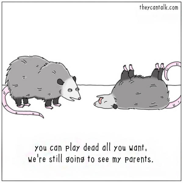 What Animals Would Say If They Had The Ability To Speak (39 pics)
