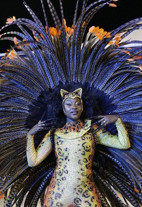 Rio De Janeiro Carnival Is Now In Full Effect (27 Pics