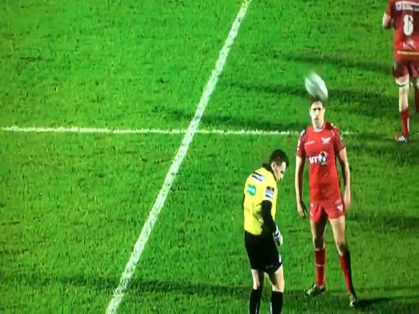 Funny Yellow Card in Rugby