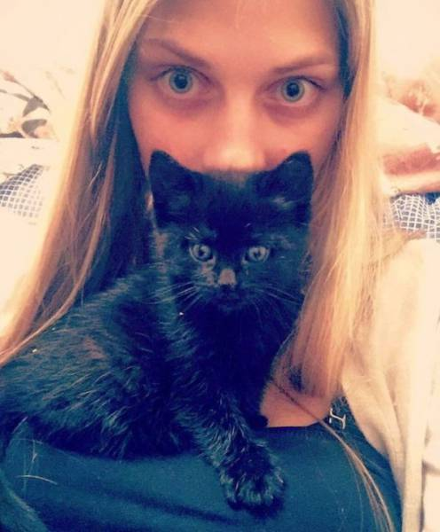 Cat-Saving Movement Started By A Woman With A Big Heart (15 pics)