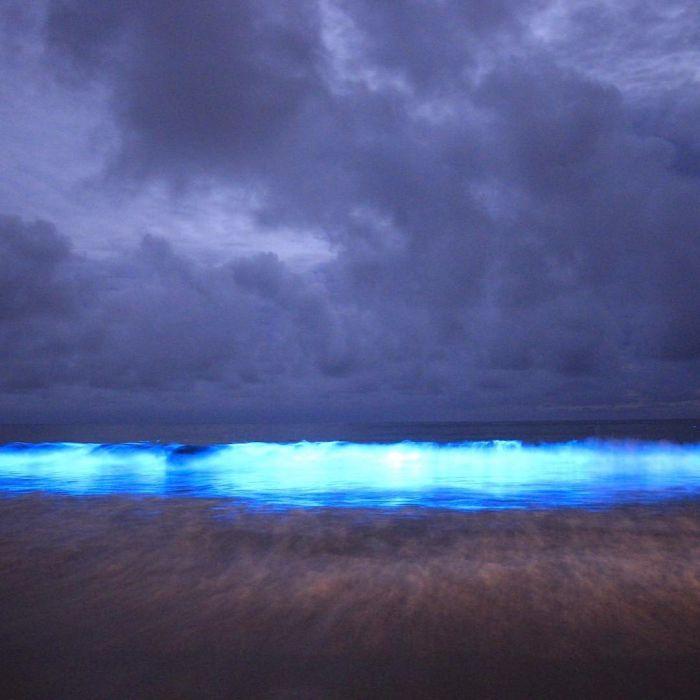 Breathtaking Water Off The Coast Of Tasmania (7 pics)