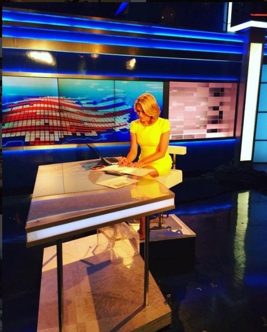 Heather Nauert Set To Join Donald Trump's Administration (15 pics)