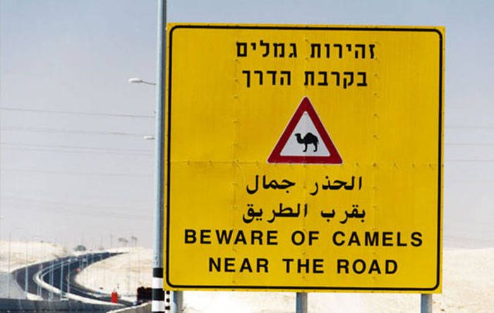 A Few Casual Israeli Things That Will Blow Your Mind (40 pics)