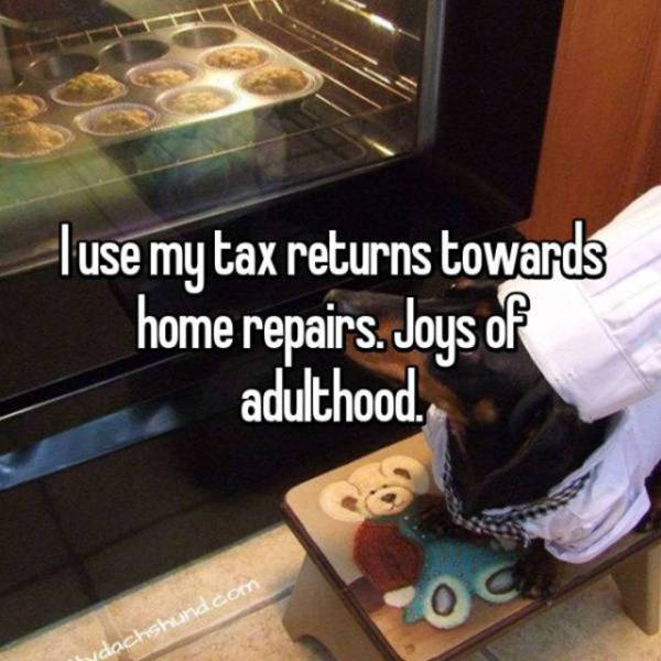 Tax Returns Aren't Something People Ever Spend Wisely (21 pics)