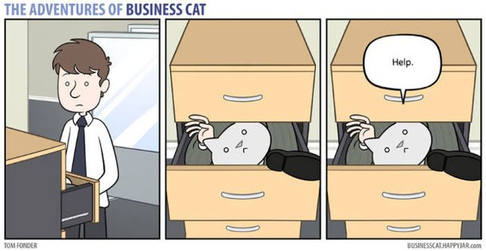 We All Need A Business Cat In Our Lives (40 pics)