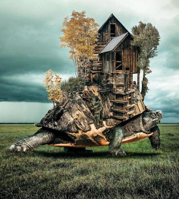 Digital Artist Brings Colorful Dreams To Life (19 pics)