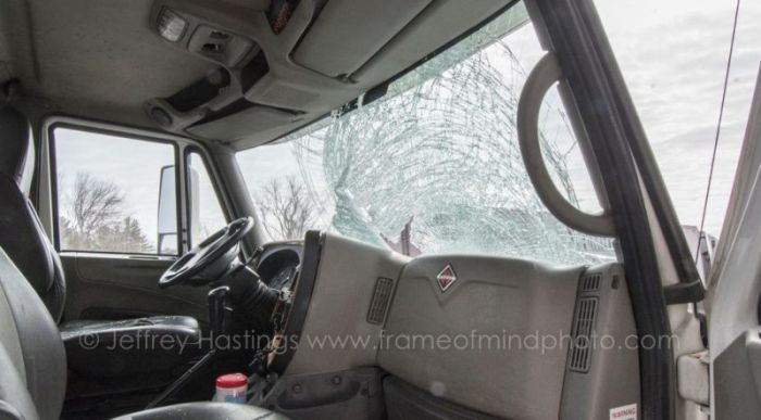 Turkey Goes Flying Through The Windshield Of A Truck (4 pics)