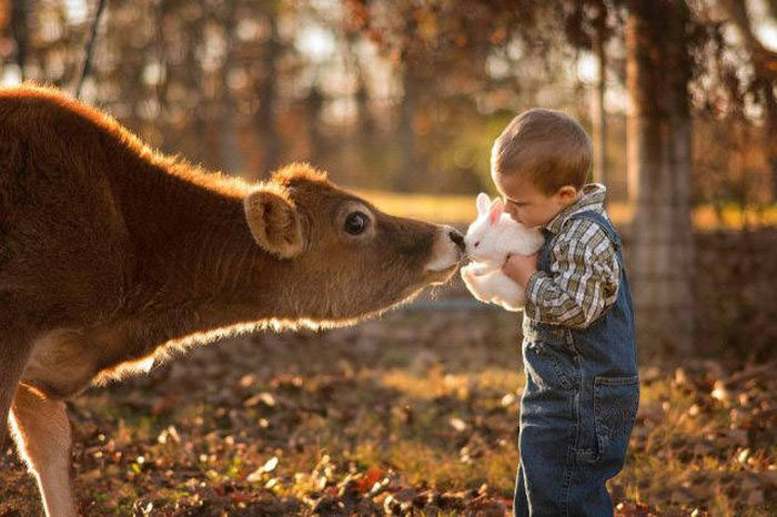 Kids Are The Most Sincere Creatures On The Planet (45 pics)
